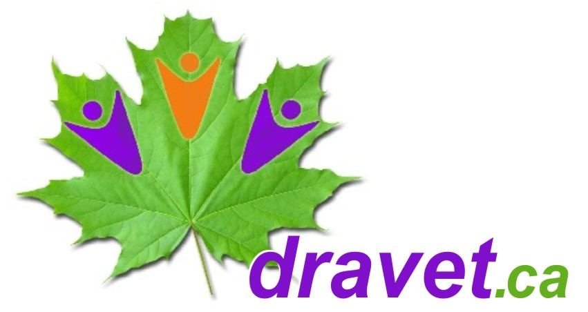 Dravet Syndrome - Walk for the Kids @ Northwind Wireless Fibe Centre | Ottawa | Ontario | Canada